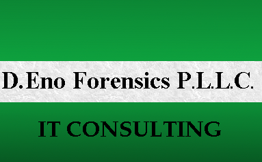 Computer Forensics Company